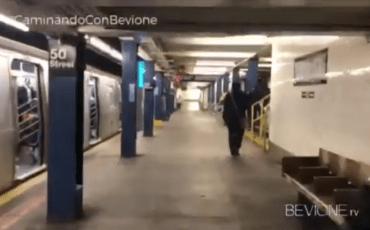 Caminando con Bevione   New York 2
